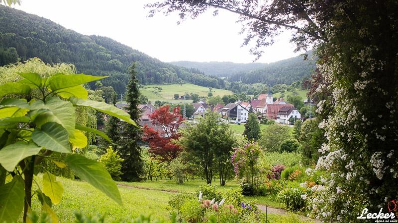 lecker_muss_es_sein_09_2016_All-Clad-Martina-und-Moritz-und-ein-Apfelgut-3