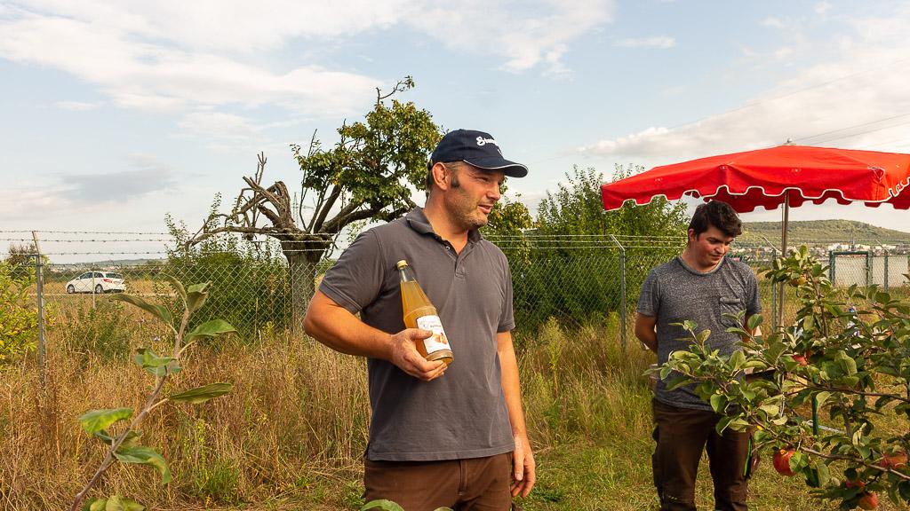 Rheinhessen genießen 2021 Obsthof dein Ingelbaum